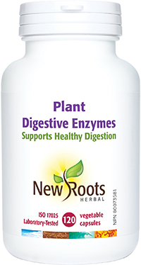 Plant Digestive Enzymes